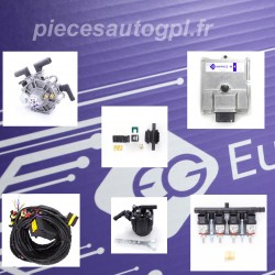48.4 ECO ADVANCED EG 4 CYLINDER KIT