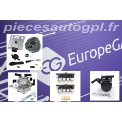 KIT 8 CYLINDRES EG AVANCE 48.8 ECO